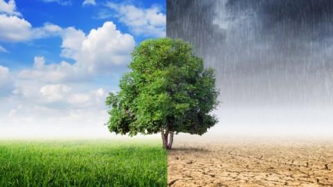 ¿Quiénes son los responsables de afrontar el cambio climático?